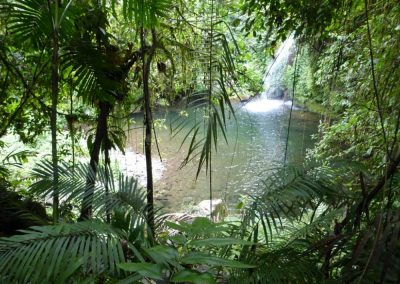 rainforest-camping-waterfall